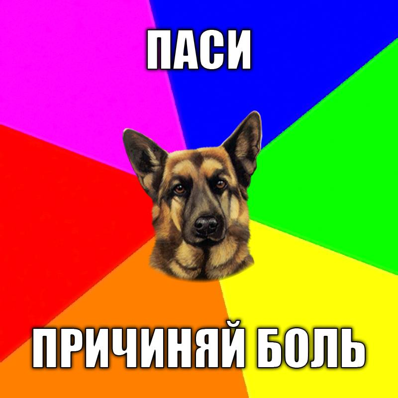 12417657_1291122314235011_7973068737664083084_n
